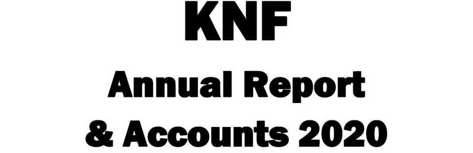 Annual Report and Accounts 2020